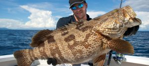 Grouper Fishing In Fort Lauderdale