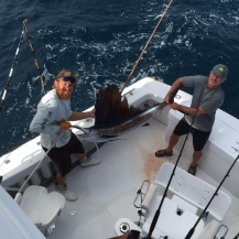 Fort Lauderdale Sailfish